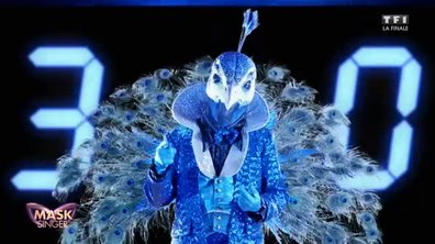 Mask Singer - Premiers indices : Paon (Finale)
