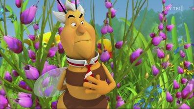 Maya l'Abeille - S01 E69 - Maya et la butineuse modèle