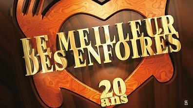 """Double CD et DVD Best of """"le Meilleur des Enfoirés : 20 ans"""""""