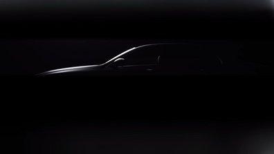 Salon de Detroit : le teaser de la Mercedes Classe E