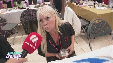 Mercredi Transpi :  message de soutien aux rongeurs stressés de France