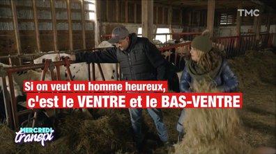 Mercredi Transpi : on n'a rien dit, la meilleure version de l'Amour est dans le pré est québécoise