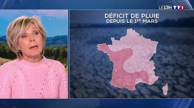 Météo : le manque de pluie sous l'œil d'Evelyne Dhéliat