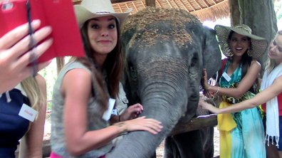 Miss France à dos d'éléphant