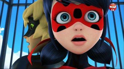 Miraculous - Les aventures de Ladybug et Chat Noir - M.Pigeon - extrait