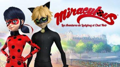 Oni-Chan - Miraculous - Les aventures de Ladybug et Chat Noir
