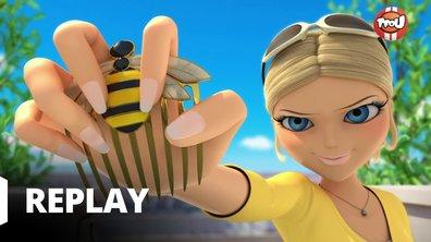 Miraculous - Les aventures de Ladybug et Chat Noir - Miraculeur