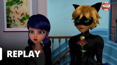 Miraculous - Les aventures de Ladybug et Chat Noir - Papa Garou