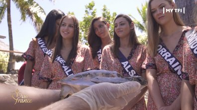 Miss France 2020 : les Miss au chevet des tortues marines