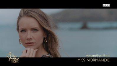 Miss Normandie 2020 est Amandine Petit (candidate à Miss France 2021)