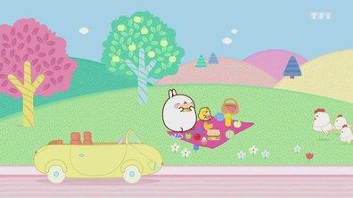 Molang - L'automobile