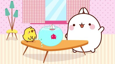 Molang - Le poisson rouge