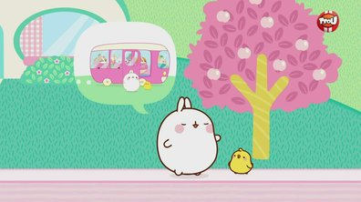 Molang - Les supporters