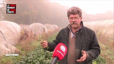 Le Moment de vérité : un mois après l'incendie de Lubrizol, la détresse des agriculteurs en attente d'indemnisation