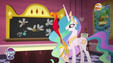 My Little Pony, les amies c'est magique - Les cours de princesse Celestia : Les créatures