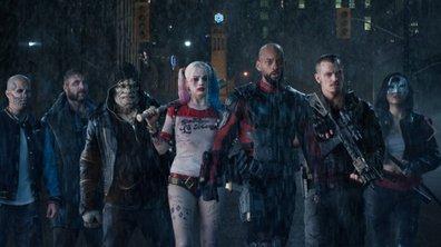 Harley Quinn bientôt dans la série ?