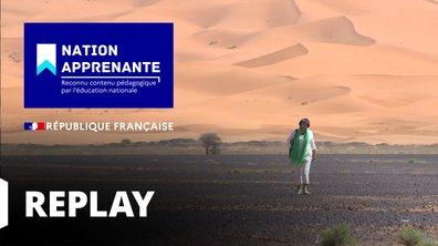 Curieuse de nature - A la découverte de la vie secrète du Fennec dans l'Erg saharien (Maroc)