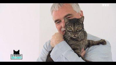 L'incroyable histoire de Negu, le chat qui a sauvé sa famille d'un terrible incendie