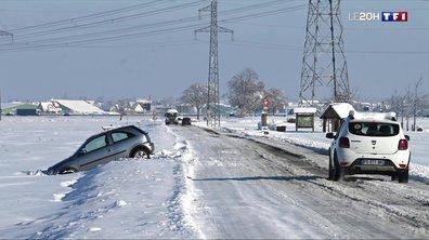 Neige : les images de l'Est de la France sous les flocons