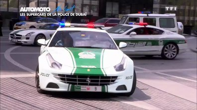 No Limit : Dubaï, la Police version Luxe
