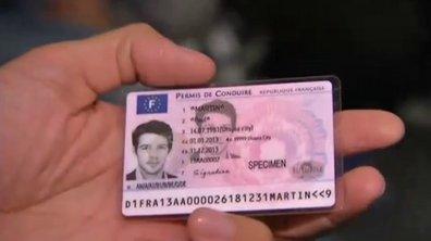 Nouveau permis de conduire : déjà la fin des puces