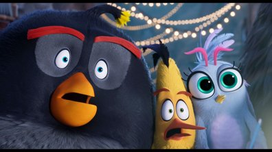 Angry Birds : Copains comme cochons - Extrait 2