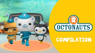 Compilation Octonauts : tous les replay