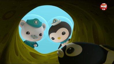 Les Octonauts & le gobie bagnard - Octonauts