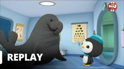 Octonauts - Les octonauts et l'éléphant de mer