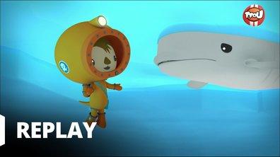 Octonauts - Les octonauts et les dauphins blancs