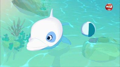Les jeux polynésiens - Oum le dauphin blanc