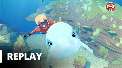 Oum le dauphin blanc - La tortue disparue