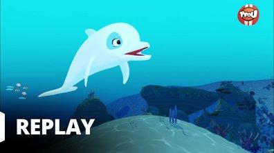 Oum le dauphin blanc - Petit Oum