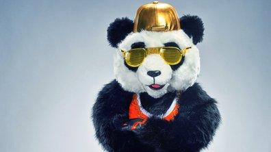 RÉVÉLATION - Qui est Panda de Mask Singer ?