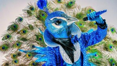 RÉVÉLATION - Qui est Paon de Mask Singer ?