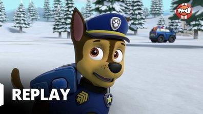 Paw Patrol, la Pat'Patrouille - La Pat'Patrouille et le petit loup blanc