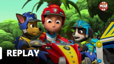 Paw Patrol, la Pat'Patrouille - Mission Dino : Course folle dans la jungle