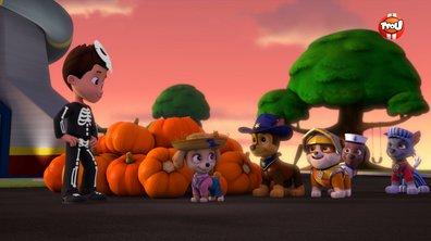 Paw Patrol, la Pat'Patrouille - La Pat' Patrouille sauve halloween - extrait
