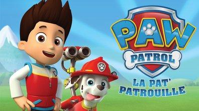 La moufette - Paw Patrol, la Pat'Patrouille