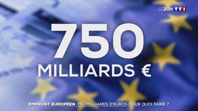 Plan de relance de la Commission européenne : 750 millions d'euros pour quoi faire ?