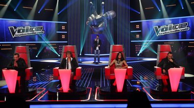 The Voice : les techniques de séduction des coachs !