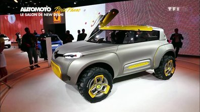 Plein Phare : le Salon de New Delhi 2014