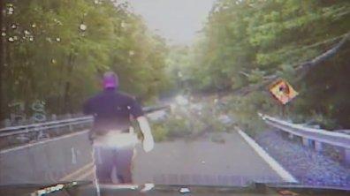 Insolite : un arbre frôle un policier sur la route