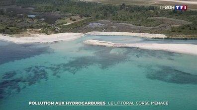 Pollution aux hydrocarbures : le littoral corse menacé