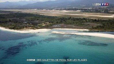 Pollution : des galettes de fioul sur les plages corses