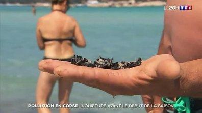 Pollution en Corse : quel impact sur le tourisme ?
