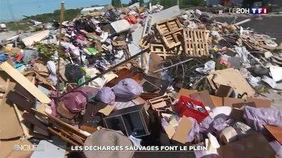 Pollution : les décharges sauvages pullulent en France