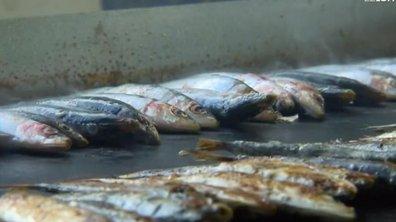 Port-de-Bouc : la dégustation de sardines bat son plein