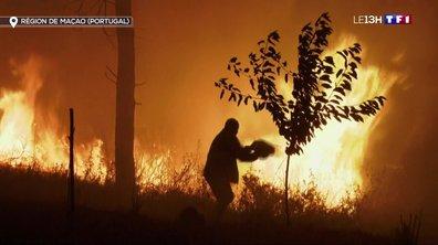 Portugal : huit blessés dans un nouvel incendie