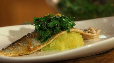 Filet de féra et écrasé de pommes de terre à l'huile d'olive